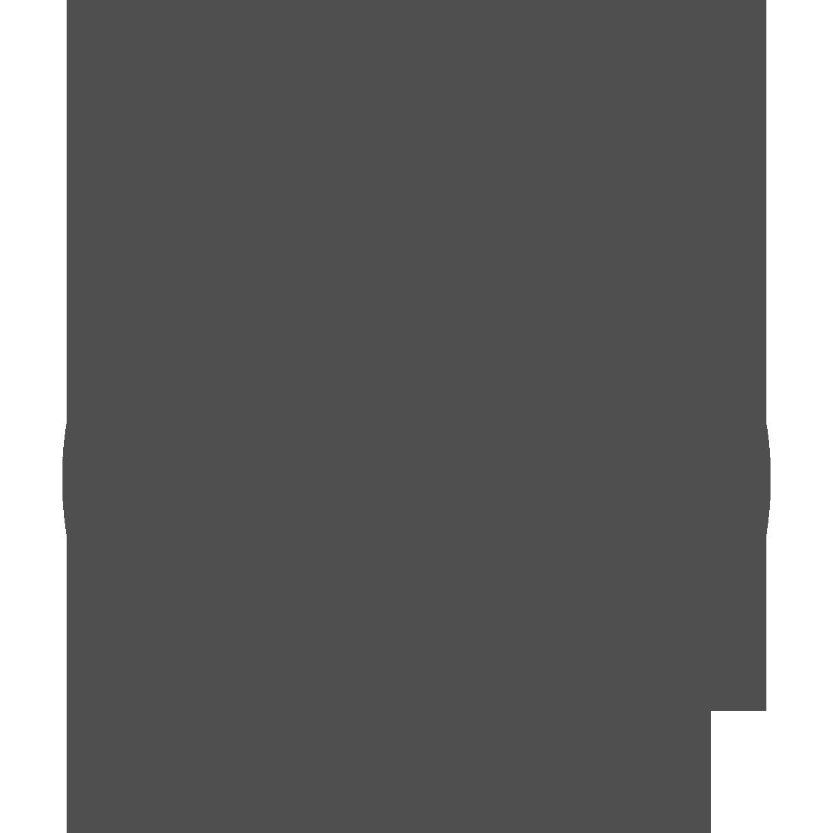 Tempo Icone